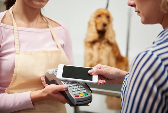Hands of female groomer taking customer smartphone payment at dog grooming salon