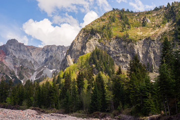 Poster de jardin Parc Naturel Rocky cliff covered with coniferous forest, surrounded by gray rocky ridges