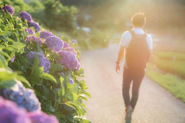 A man walking on a hydrangea road