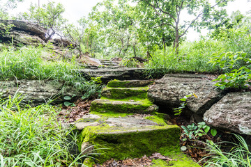 Old ancient stone stairs with moss.