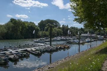 Ginsheim Altrhein