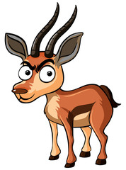 Deer with serious face