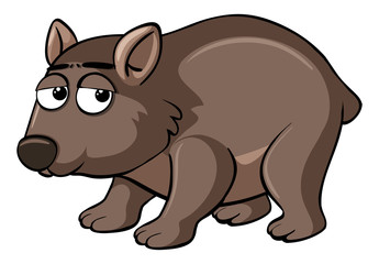 Brown wombat with sad face