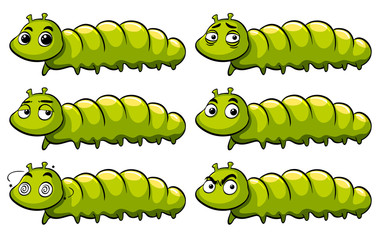 Green caterpillar with different emotions