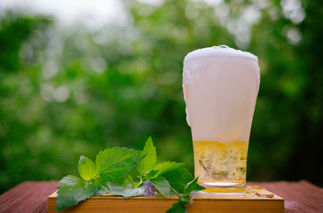 Golden beer in glass with green leaf on wooden box with blur green nature background. Prevent heart disease and help reduce high blood pressure.