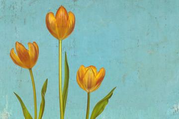 Retro styled image of three orange tulips