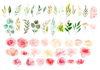 Watercolor set with flowers.  Wall mural