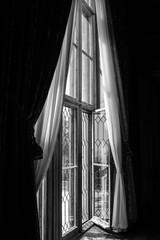 A huge, Luxurious, old window