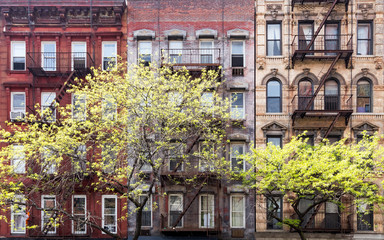 Fototapete - Historic old buildings and trees along 3rd Avenue in the East Village of Manhattan, New York City