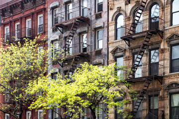 Fototapete - Sunlight shines on trees in front of historic old buildings on 3rd Avenue in the East Village of Manhattan, New York City