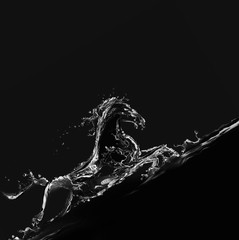 A water horse made of water galloping upwards.