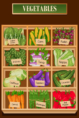 Different Kinds of Vegetables in a Box