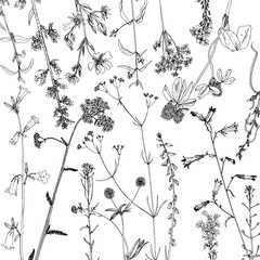 Background with ink drawing herbs and flowers