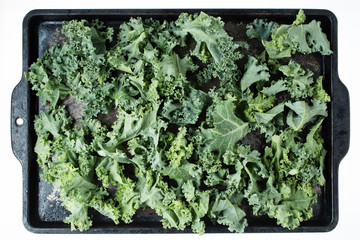 Kale on a cookie sheet