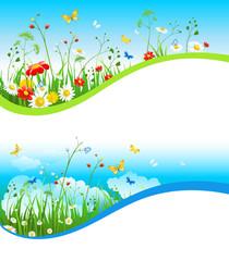 Summer nature set