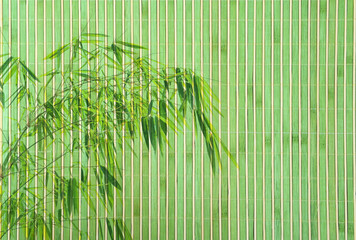 Wall Mural - bamboo frame of bamboo-leaves background.