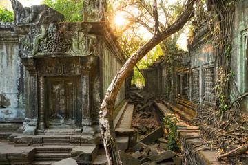 Temple Beng Mealea, Angkor Wat, Cambodia