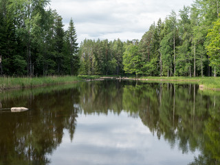 Swedish river and natural salmon area in summer with a fisherman