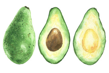 Hand drawn watercolor avocado, green sliced half with pit, food art isolated on white background.