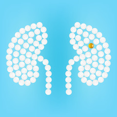 Human Kidney With Pills Isolated On A Background Realistic Vector Illustration.