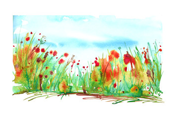 Watercolor landscape with the image of wild grasses, flowers, green plants, Red poppy, fields. Against the background of the blue sky. Abstract paint spots, artwork. Vintage postcard, banner, logo