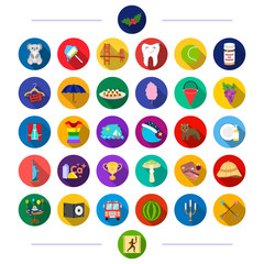 entertainment, animals, textiles and other web icon in flat style.achievement, sport, business, icons in set collection.