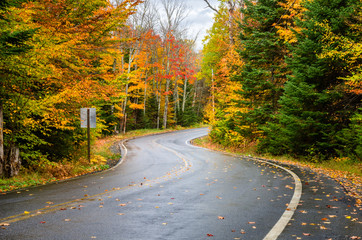 Wet Winding Mountain Road through a Forest in Autumn. Fall Foliage in the Adirondacks, NY.