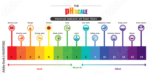 colours on the ph chart: The ph scale universal indicator ph color chart diagram stock