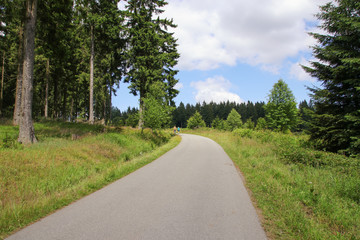 Hiking and biking, Nationalpark Harz, Wanderweg, Eckerstausee