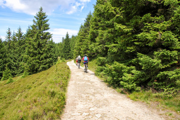 Hiking, Trekking, Nationalpark Harz, Eckerstausee