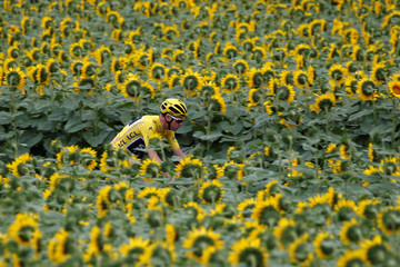 Cycling - The 104th Tour de France cycling race