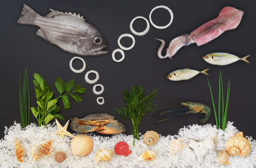 Seafood concept. Sea salt, seashells, dill, parsley and onion as ocean bottom. Fish, squid, shrimp and crab as seafood.