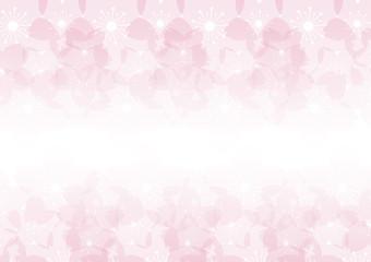 Cherry blossom flowers background. Sakura  pink flowers  background.