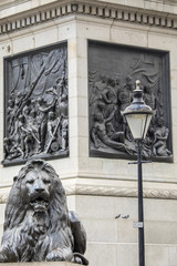 Trafalgar Square Lion in London