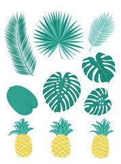Set of tropical leaves and pineapples.  Sketch, floral elements for your design.Vector illustration.