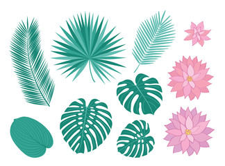 Set of tropical leaves and pink flowers. Sketch, floral elements for your design. Vector illustration.