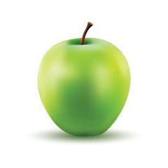 Gradient Mesh Vector Illustration of a Photo Realistic Apple