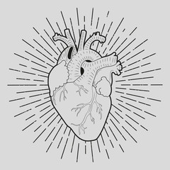Heart. Vintage. Vector.