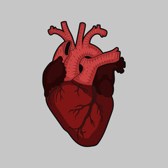 Heart art. Vector.