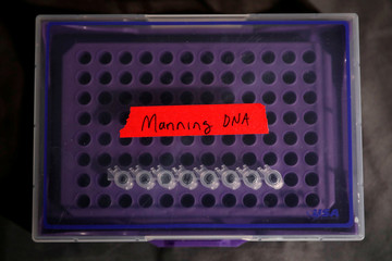A container of DNA extracted from hair clippings and cheek swabs received from formerly imprisoned U.S. Army Private Chelsea Manning is seen inside the studio of Artist Heather Dewey-Hagborg in New York