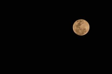 Bright Yellow Moon at Night