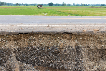 Soil layers under the road and paddy fields.