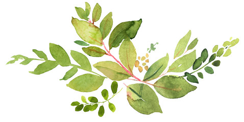 Green twigs watercolor decoration