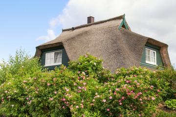 Reetdach, Strohdach, Ostsee, Usedom