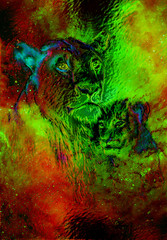 Lioneass and little lion cub in cosmic space. Glass effect.