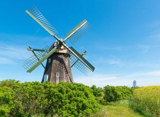 Windmühle und Kirche auf dem Land zwischen Hagebutten und Rapsfeld