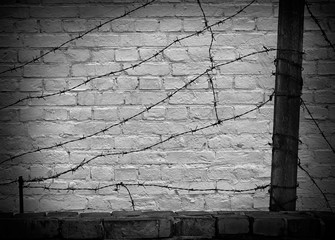 barbed wire on a dark brick wall