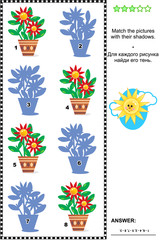 Visual puzzle: Match the pictures of flowers in pots to their shadows. Answer included.