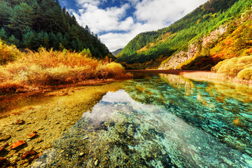 Amazing crystal clear water of river. Colorful autumn landscape