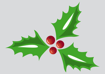 Christma holly, green leaves, red berries on grey background